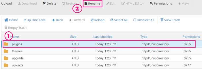 Fix too many redirect Error in WordPress